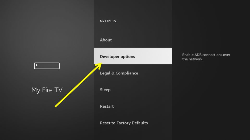 From the subsequent menu, choose Developer Options.